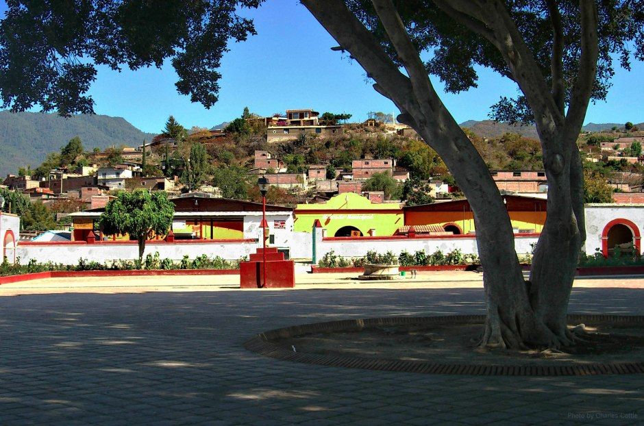 A long view of the village of Teotitlán del Valle, looking up a hill populated with houses from the vantage point of a shade tree in a large courtyard.